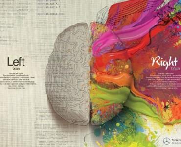 left brain vs right brain infographic