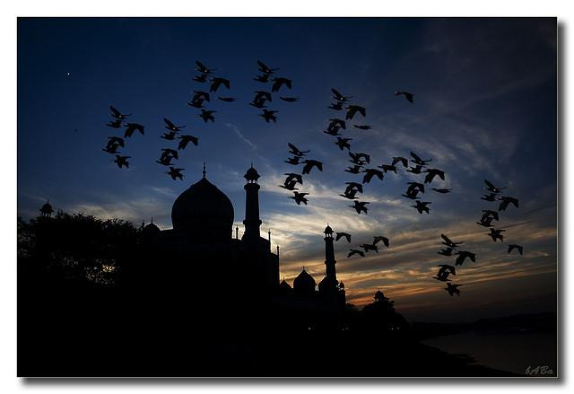 Taj Mahal (Silhouette)