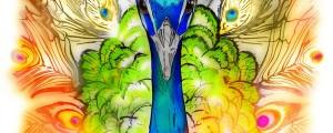Amazing Peacock Art Piece