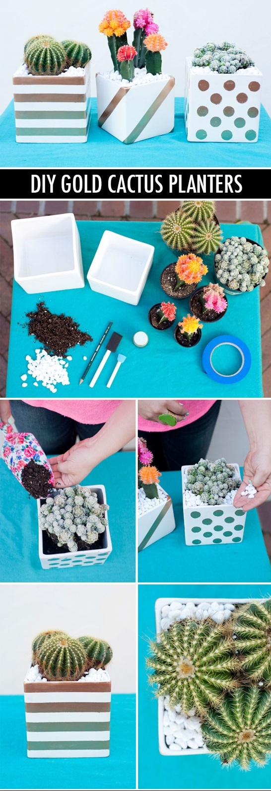 DIY Basics - Gold Patterned Cactus Planters