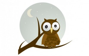 free-vector-owl cute