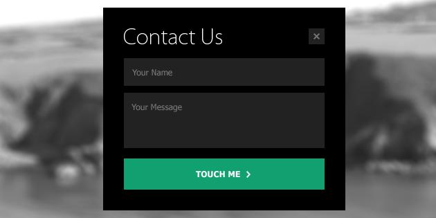 mini-metro-contact-form