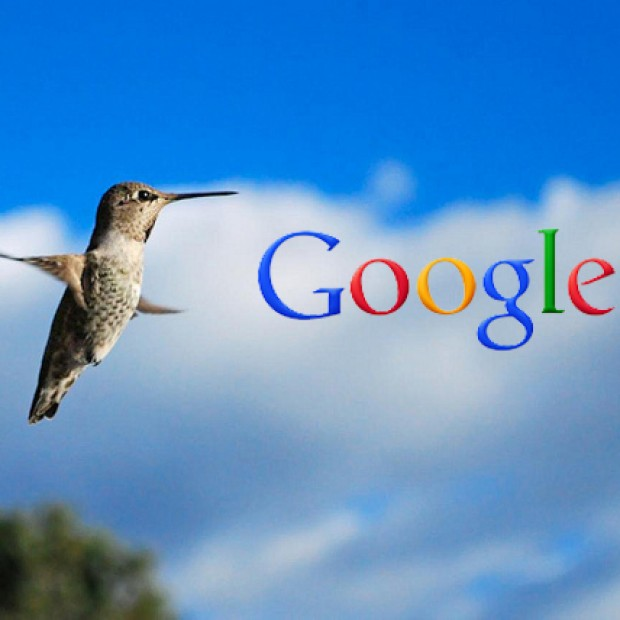 Latest Google Hummingbird Algorithm Updates and How You Can Tackle It?