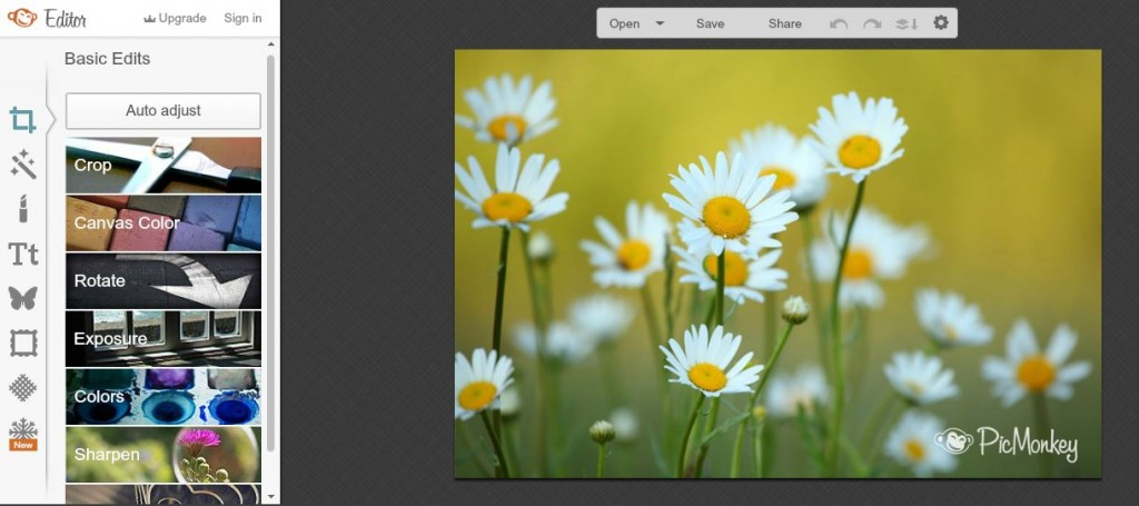 Best online photo editors- Picmonkey